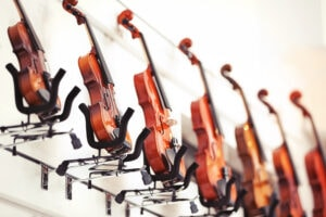 Violins In Music Shop